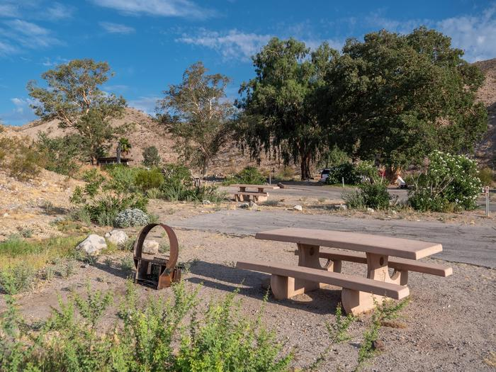 Cottonwood Cove Campground 2493Cottonwood Cove Campground