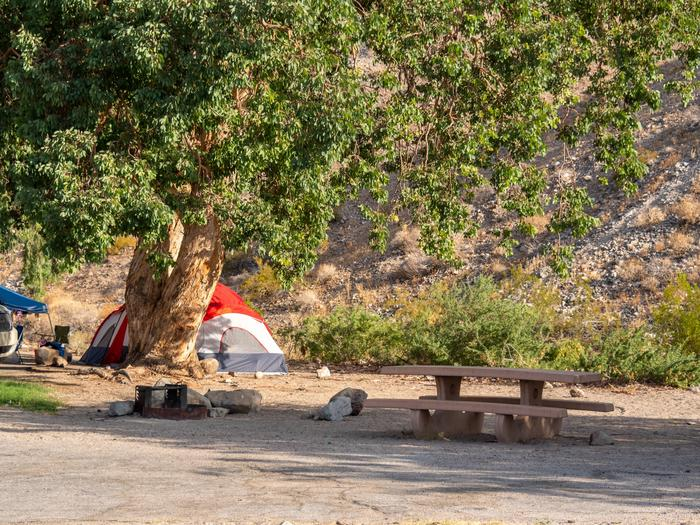Cottonwood Cove Campground 2499Cottonwood Cove Campground