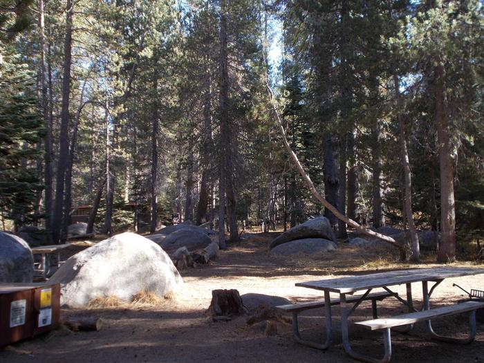 Food locker, picnic table, and fire ringSite 5