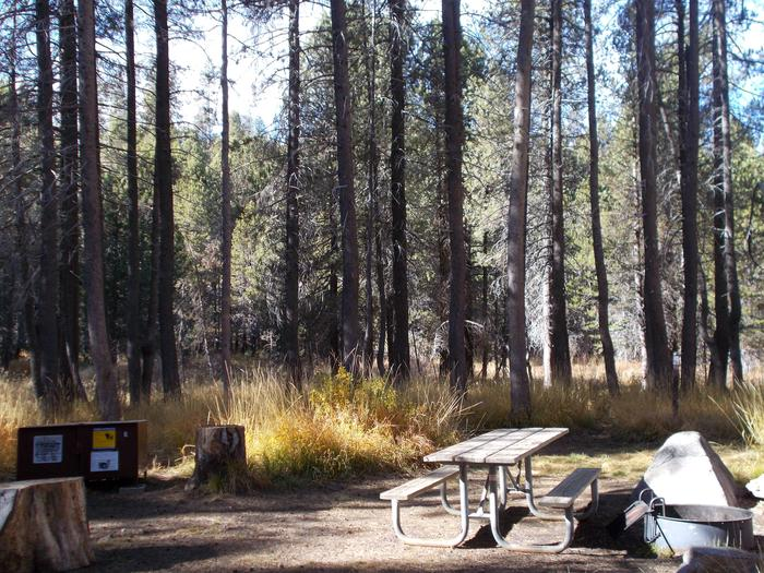 Food locker, picnic table, and fire ringSite 6