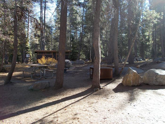 Food locker, picnic table, and fire ringSite 10