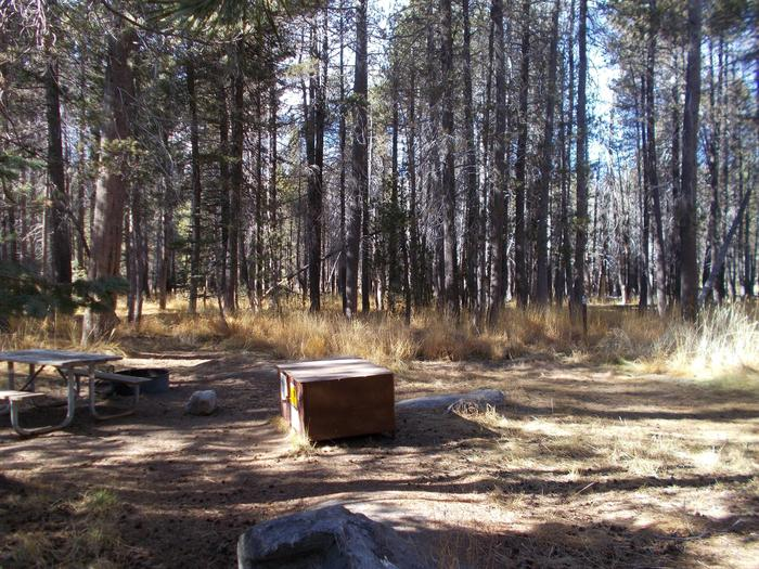 Food locker, picnic table, and fire ringSite 11