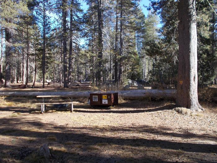 Food locker, picnic table, and fire ringSite 12