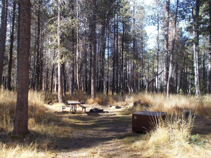 Food locker, picnic table, and fire ringSite 13