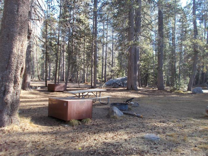 Food locker, picnic table, and fire ringSite 15