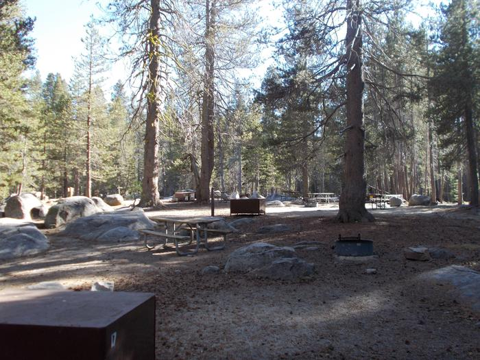 Food locker, picnic table, and fire ringSite 17