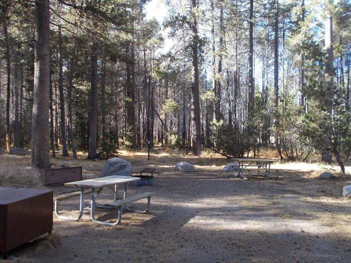 Food locker, picnic table, and fire ringSite 18