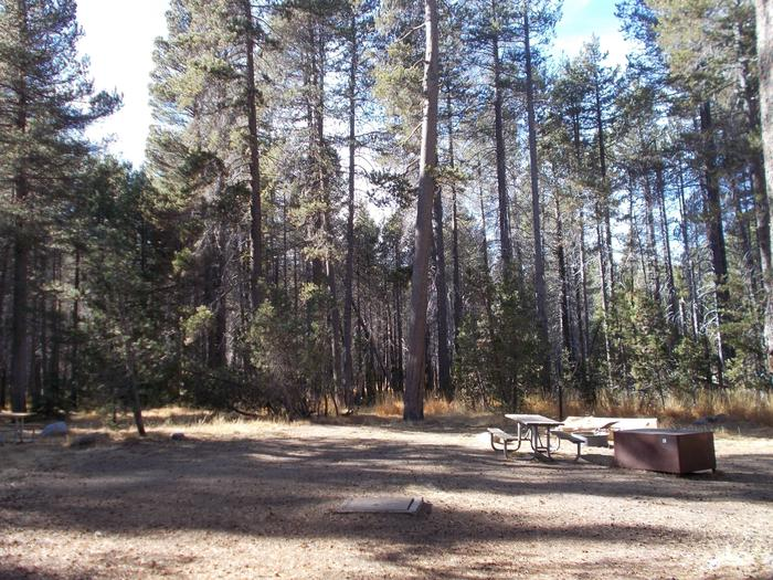 Food locker, picnic table, and fire ringSite 19