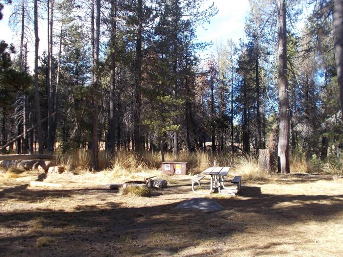 Food locker, picnic table, and fire ringSite 20