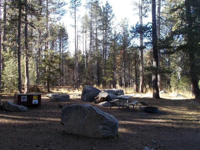 Food locker, picnic table, and fire ringSite 22