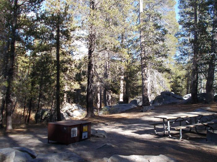 Food locker, picnic table, and fire ringSite 23