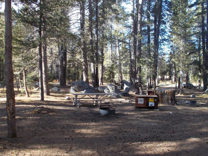 Food locker, picnic table, and fire ringSite 25