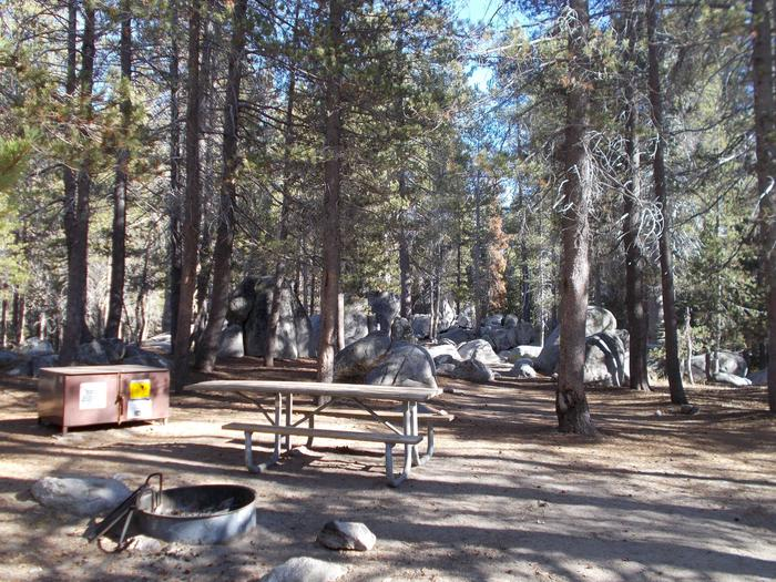 Food locker, picnic table, and fire ringSite 27