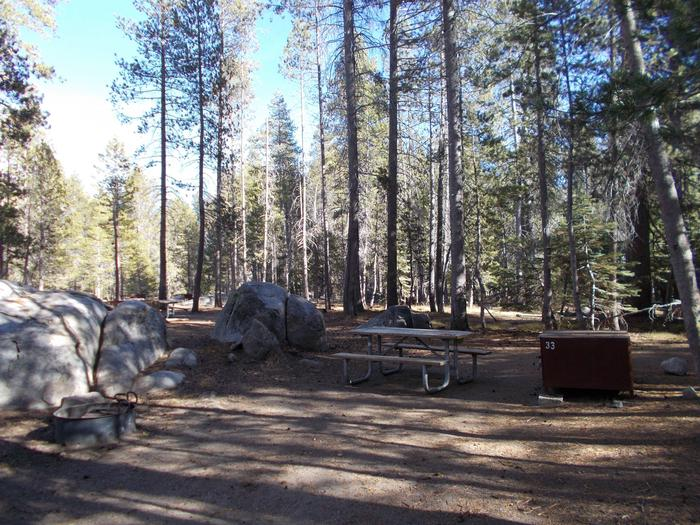 Food locker, picnic table, and fire ringSite 33