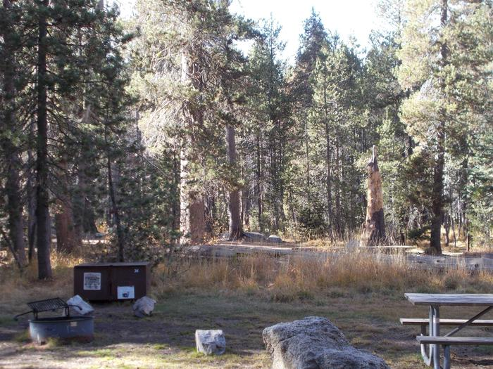 Food locker, picnic table, and fire ringSite 34
