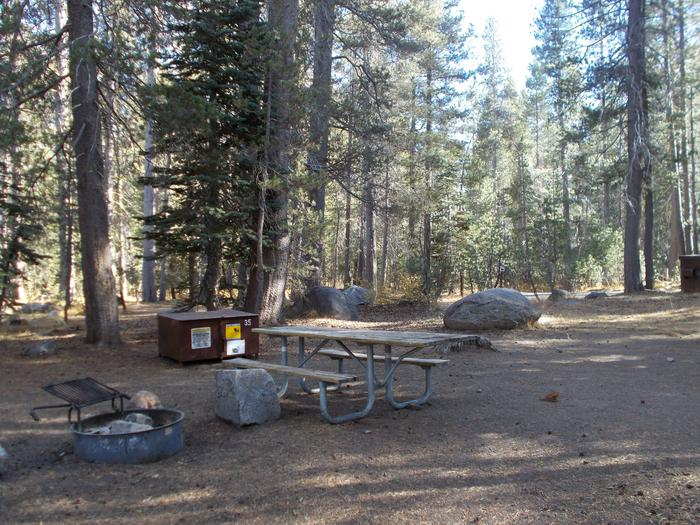 Food locker, picnic table, and fire ringSite 35