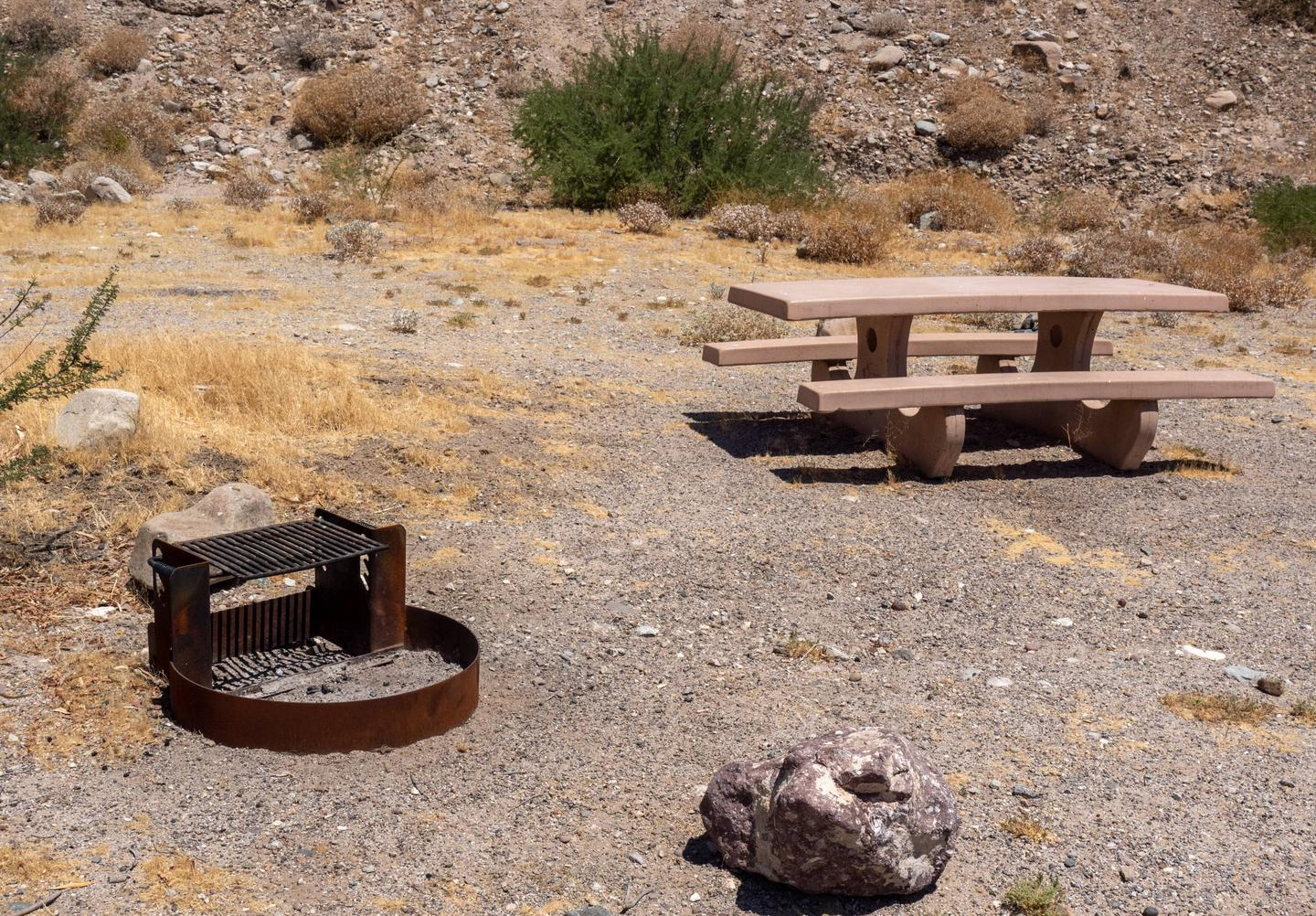 CWC 0802Cottonwood Cove Campground Site 8