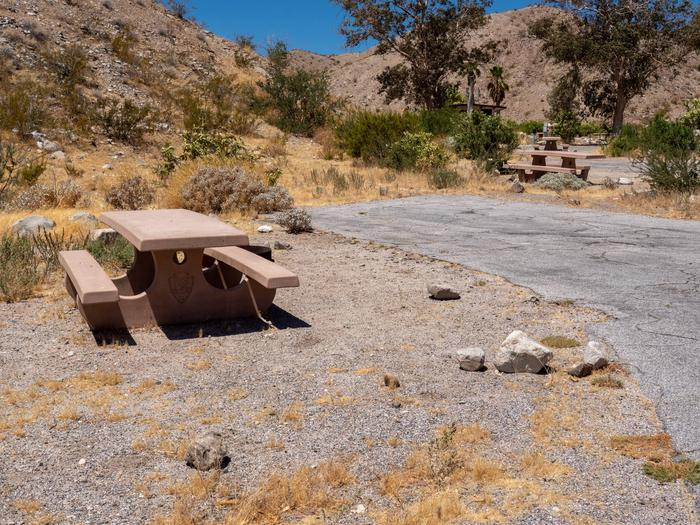 CWC 1003Cottonwood Cove Campground Site 10