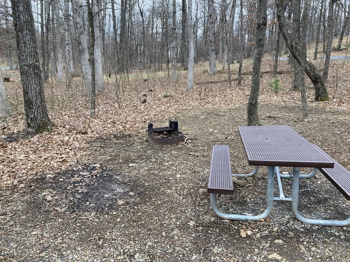 Mathews Arm Campground Site 022