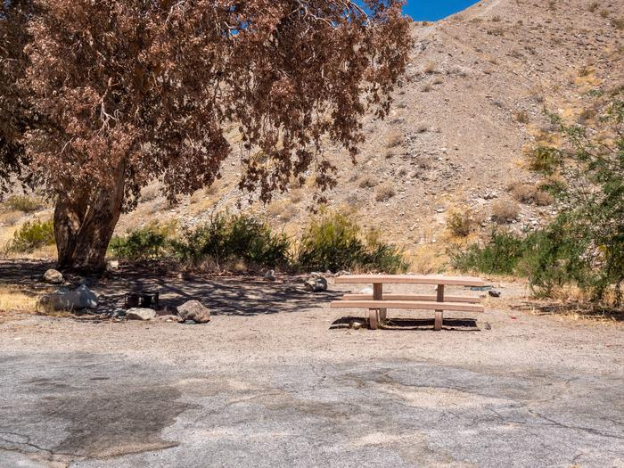 CWC 1203Cottonwood Cove Campground Site 12
