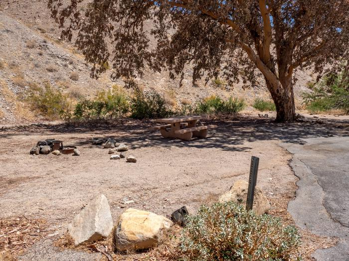 CWC 1401Cottonwood Cove Campground Site 14