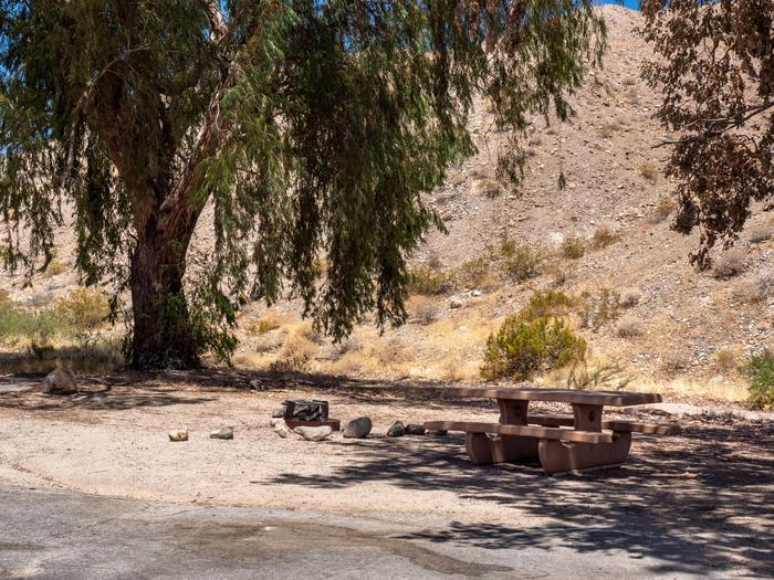 CWC 1403Cottonwood Cove Campground Site 14