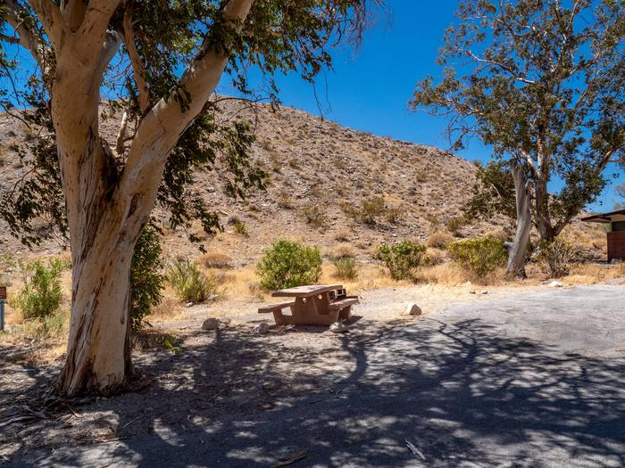 CWC 1503Cottonwood Cove Campground Site 15
