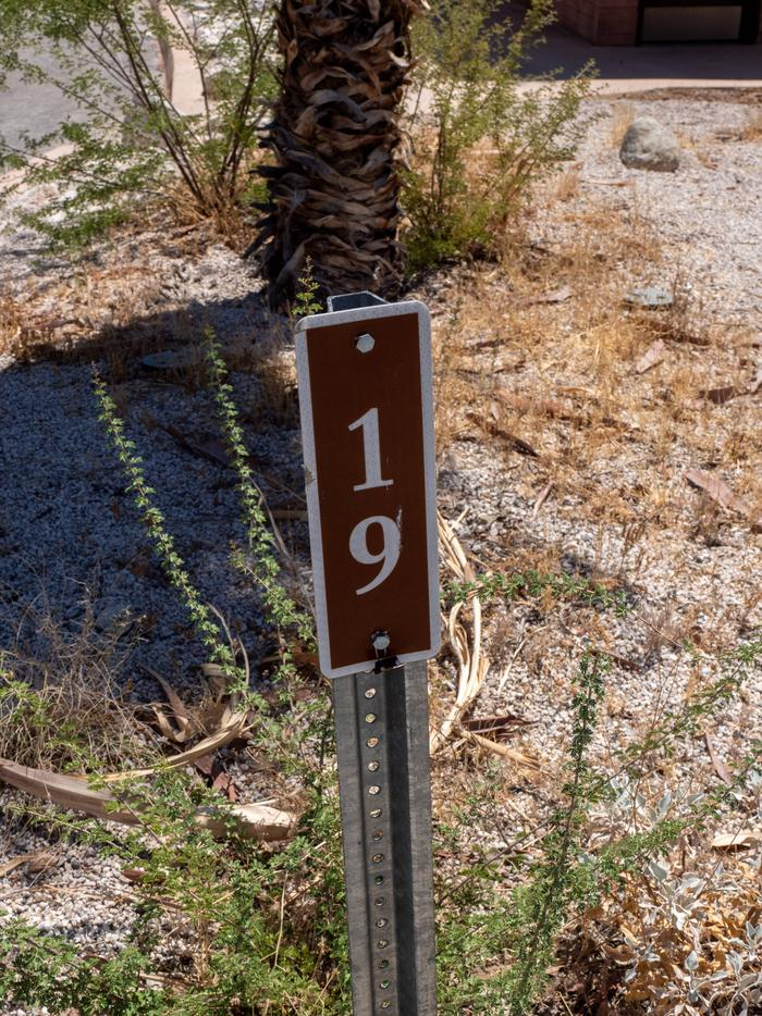 CWC 1900Cottonwood Cove Campground Site 19
