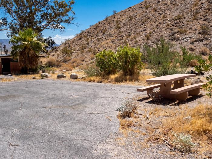 CWC 1903Cottonwood Cove Campground Site 19