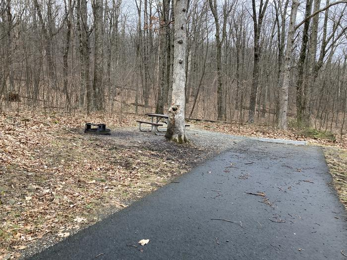 Mathews Arm Campground Site 013