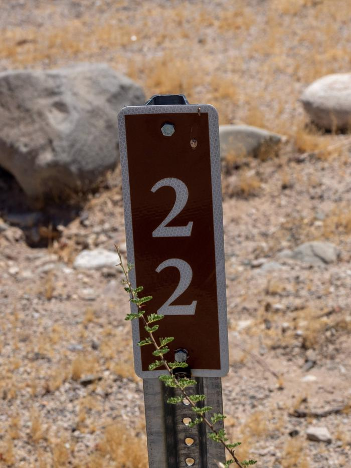 CWC 2200Cottonwood Cove Campground Site 22