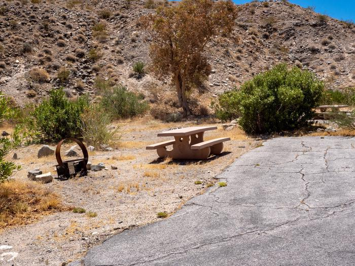 CWC 2503Cottonwood Cove Campground Site 25
