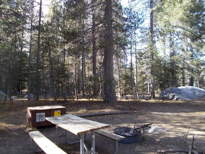 Food locker, picnic table, and fire ringSite 40