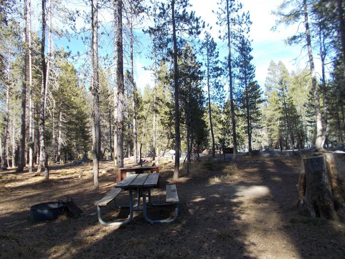 Food locker, picnic table, and fire ringSite 42