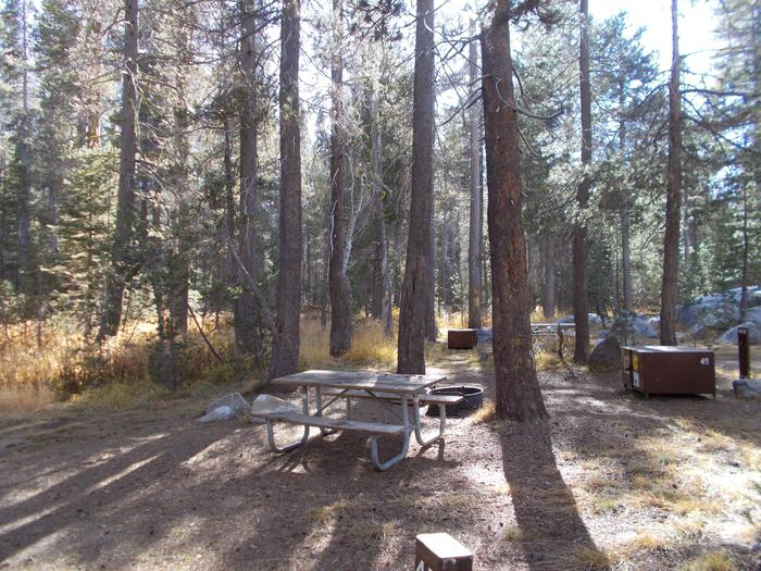 Food locker, picnic table, and fire ringSite 45