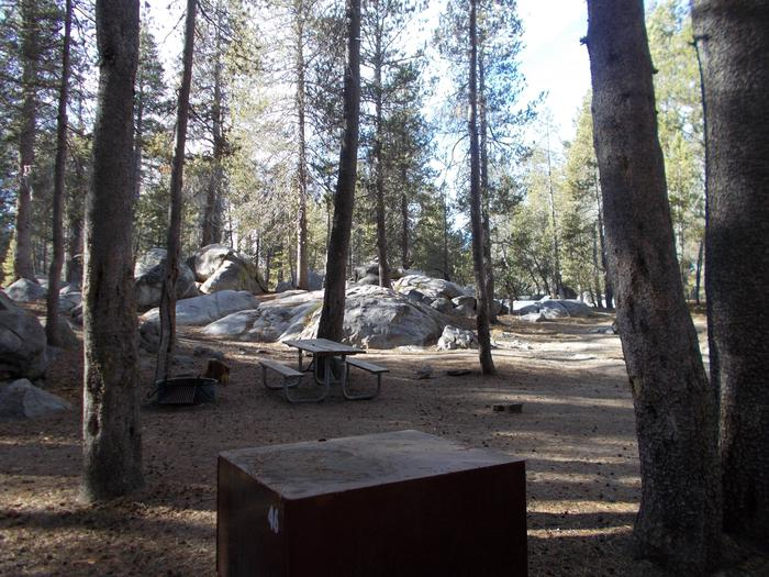 Food locker, picnic table, and fire ringSite 46
