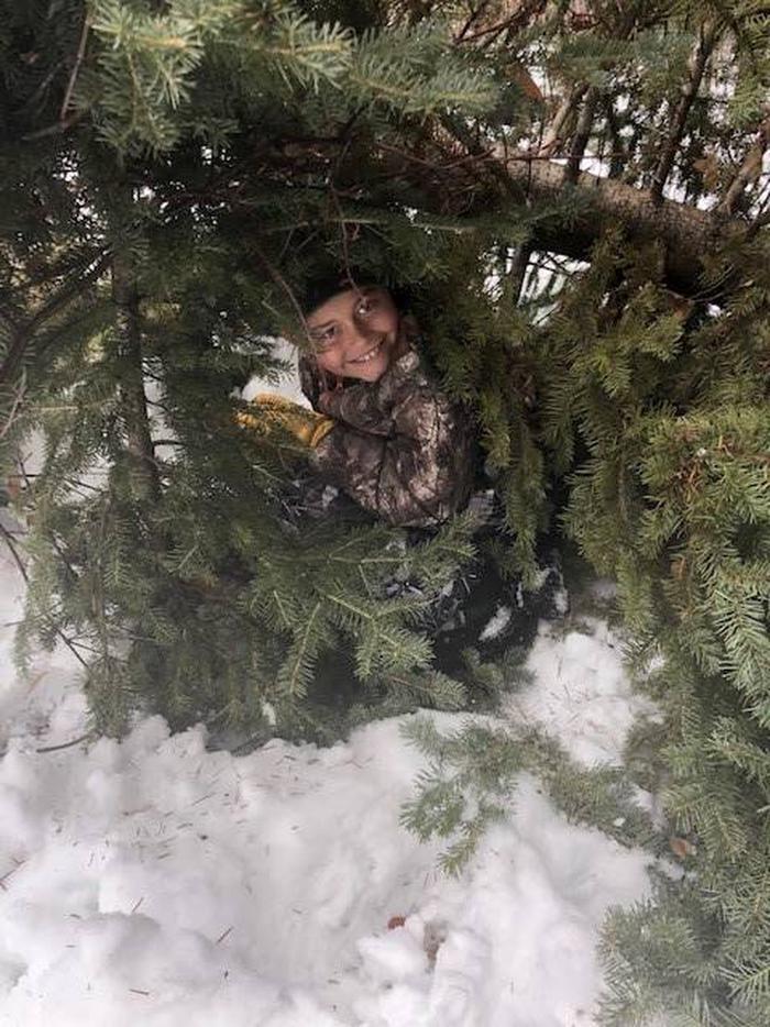 Hiding under the Christmas Tree Peek-a-Boo through the Christmas Tree