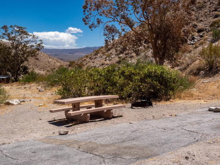 CWC 3101Cottonwood Cove Campground Site 31
