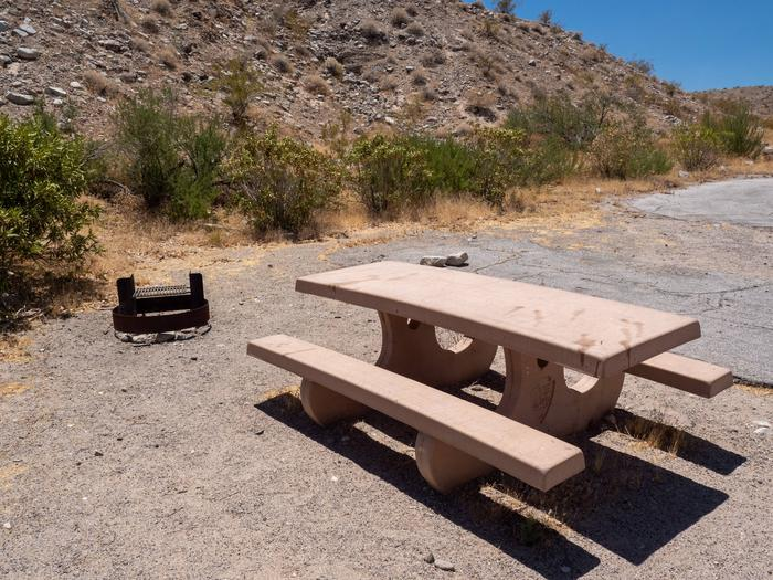 CWC 3102Cottonwood Cove Campground Site 31