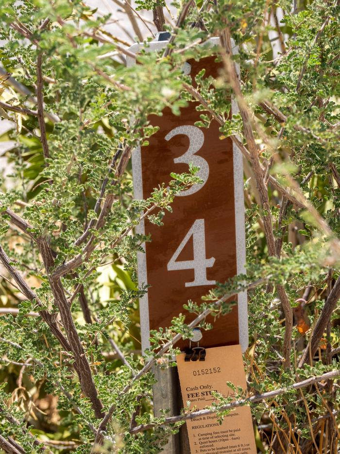 CWC 3400Cottonwood Cove Campground Site 34