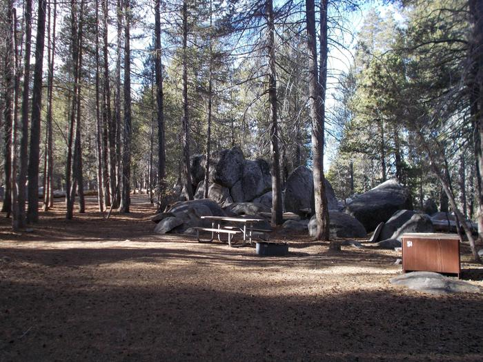 Food locker, picnic table, and fire ringSite 51