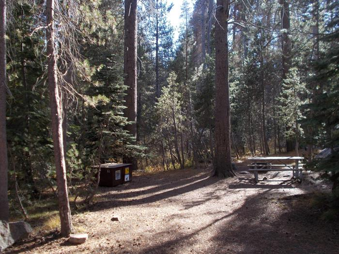 Food locker, picnic table, and fire ringSite 53