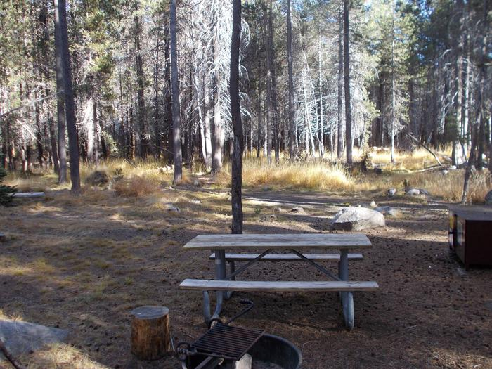 Food locker, picnic table, and fire ringSite 54