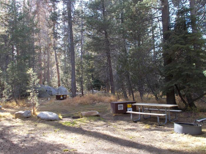 Food locker, picnic table, and fire ringSite 57