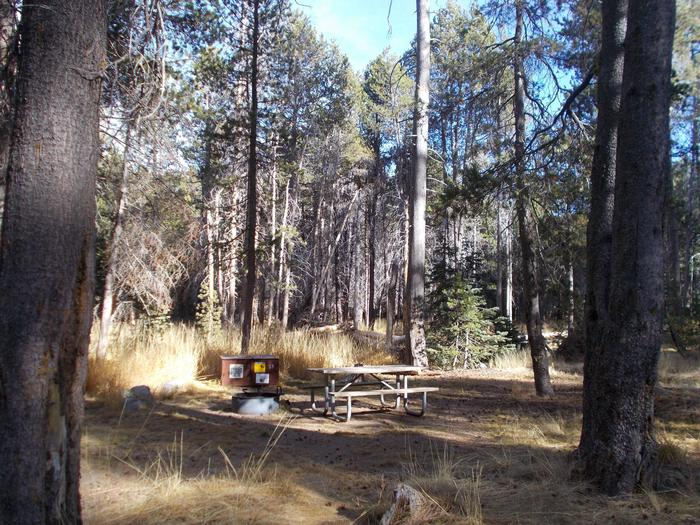 Food locker, picnic table, and fire ringSite 59