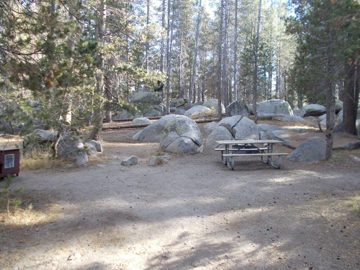 Food locker, picnic table, and fire ringSite 61