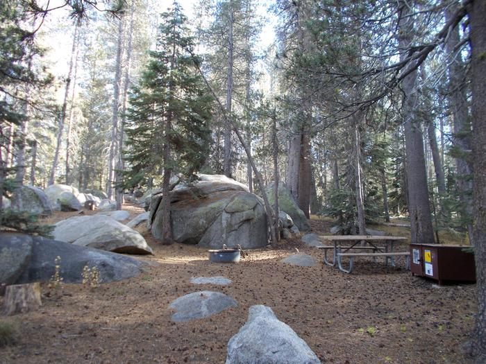 Food locker, picnic table, and fire ringSite 62