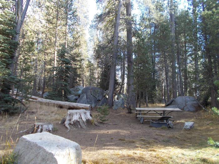 Food locker, picnic table, and fire ringSite 66