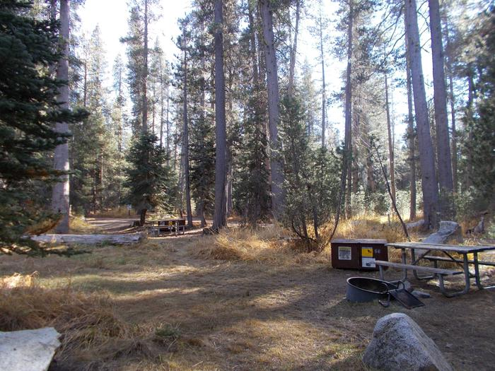 Food locker, picnic table, and fire ringSite 68
