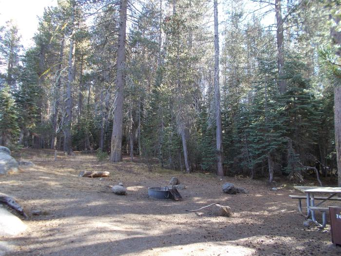Food locker, picnic table, and fire ringSite 74